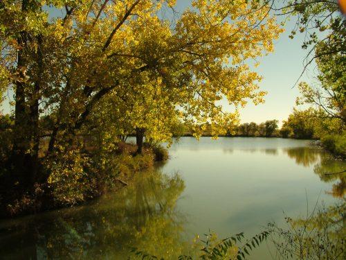 Golden_Pond