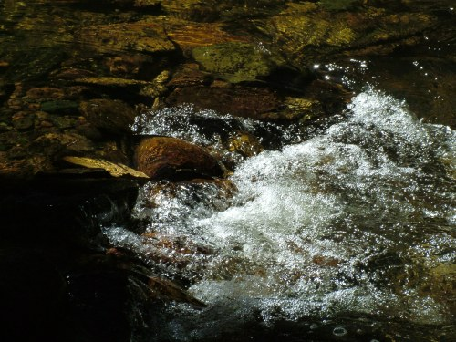 Fish_Creek_Colors